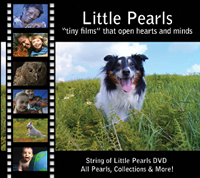 Cover for 2011 DVD
