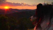 Anam Cara: Mitch Sunset Closer